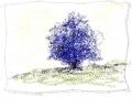 feeling blu